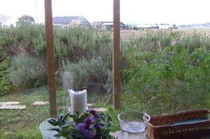 Harb_garden